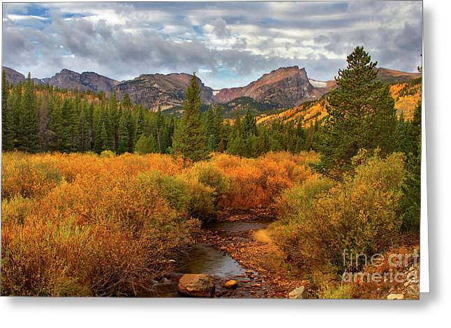 Fall In Rocky Mountain National Park Greeting Card by Ronda Kimbrow