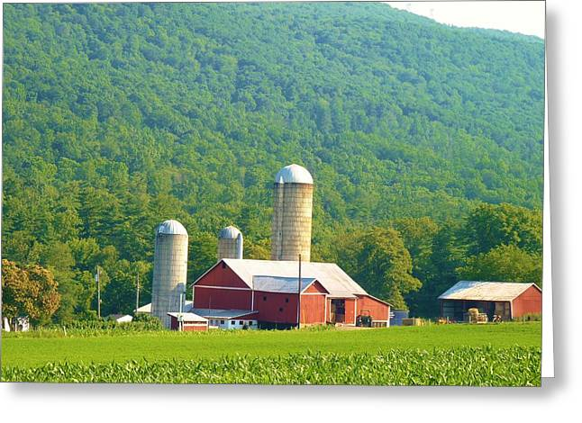 Farm In Belleville Pa Greeting Card