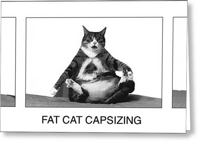 Fat Cat Capsizing Greeting Card by Richard Watherwax