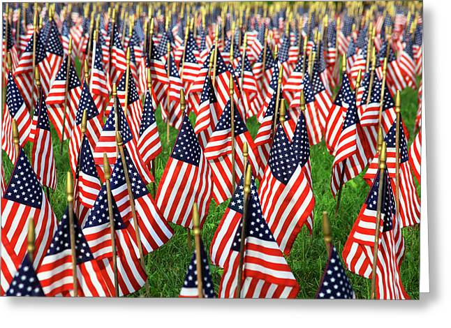 Field Of Flags Greeting Card by Karol Livote