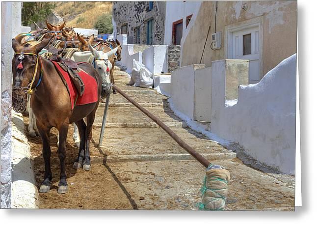 Fira - Santorini Greeting Card by Joana Kruse