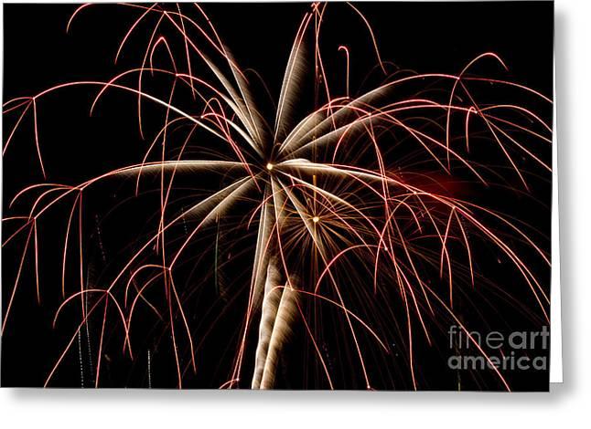 Fireworks 2016 Greeting Card by Tara Lynn