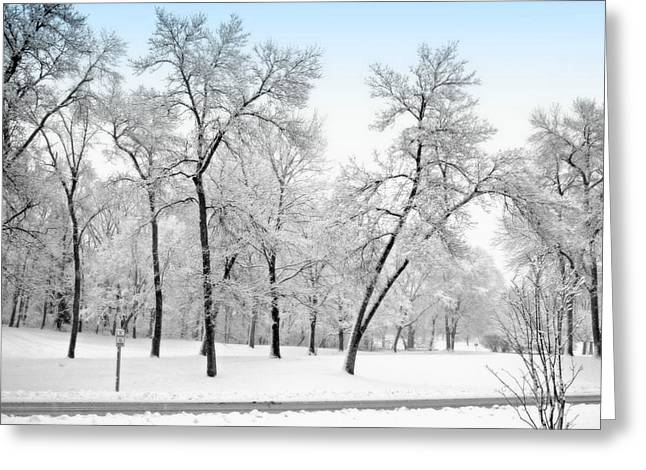 First Snow Greeting Card by Kay Novy