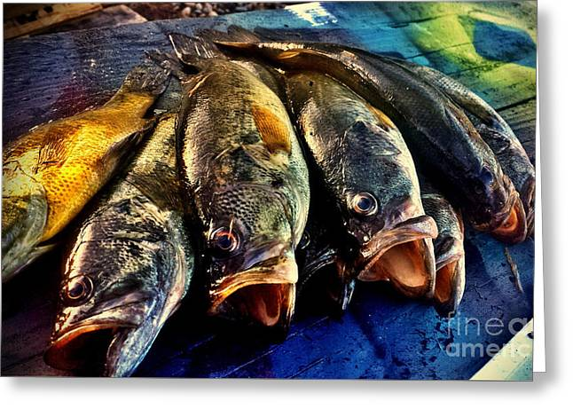 Fish Fry At The Lake Greeting Card by Scott D Van Osdol