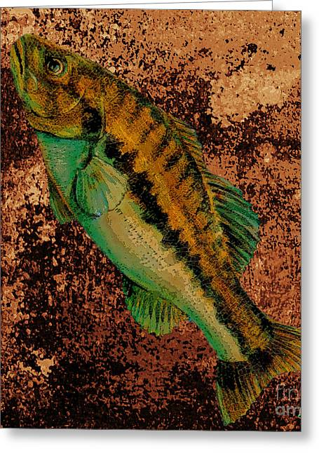 Fish Greeting Card by Saundra Myles