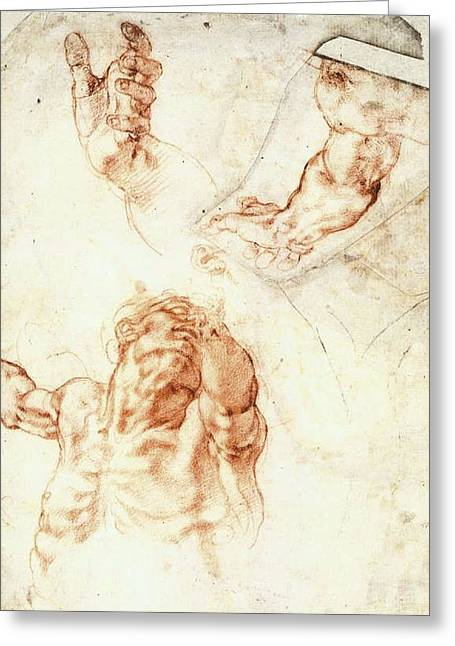 Five Studies For The Figure Of Haman Greeting Card by Michelangelo Buonarroti