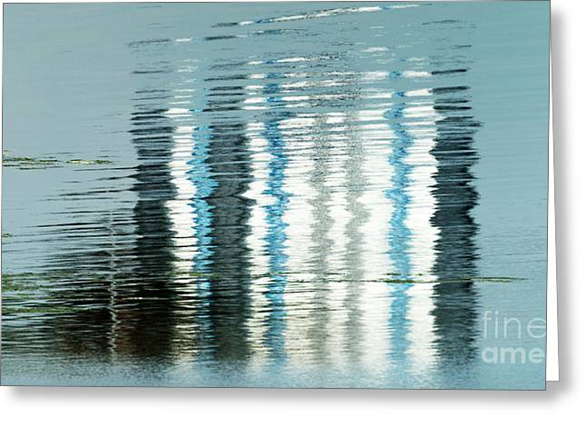 Greeting Card featuring the photograph Floating On Blue 44 by Wendy Wilton