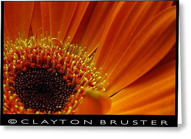 Floral Greeting Card by Clayton Bruster