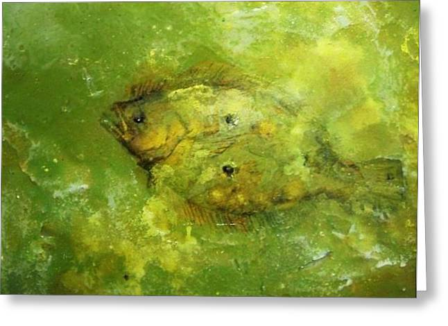 Flounder Greeting Card by Robert Cunningham
