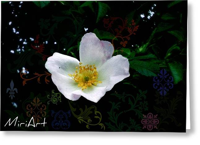 Greeting Card featuring the photograph Flower Deco by Miriam Shaw