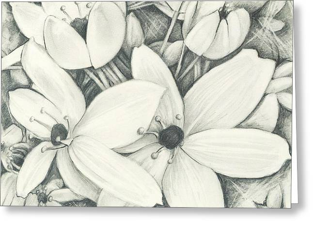 Flowers Pencil Greeting Card