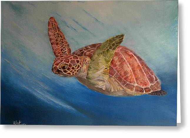 Flying Underwater Greeting Card by Ceci Watson
