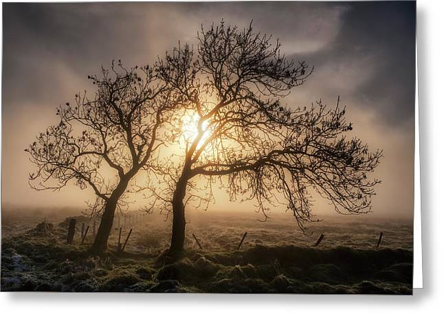 Foggy Morning Greeting Card by Jeremy Lavender Photography