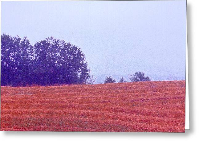 Greeting Card featuring the photograph Freshly Cut Hay Ae by Lyle Crump