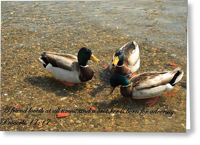 Friends Greeting Card by Doug Mills