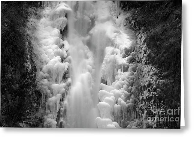 Frozen Multnomah Falls Greeting Card