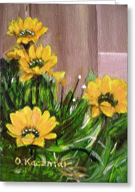 Gazanias Greeting Card by Olga Kaczmar