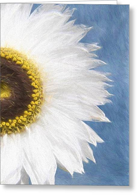 Gerbera Daisey Greeting Card by Jim  Hatch