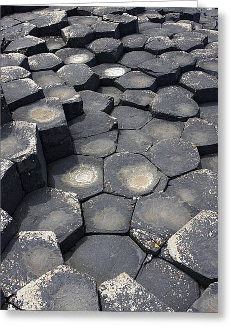 Giant Causeway Northern Ireland Greeting Card by Pierre Leclerc Photography
