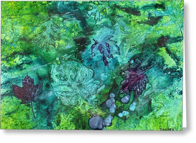 Gilkey Creek Autumn Greeting Card by James Douglas Draper