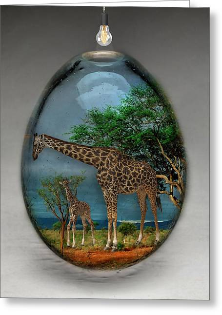 Giraffe Art Greeting Card by Marvin Blaine