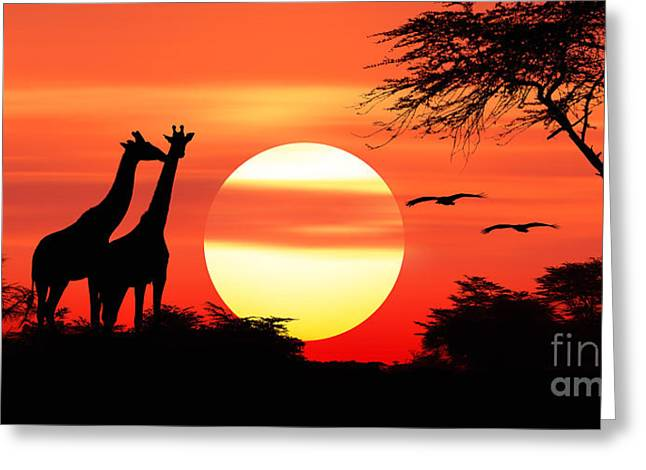 Giraffes At Sunset Greeting Card