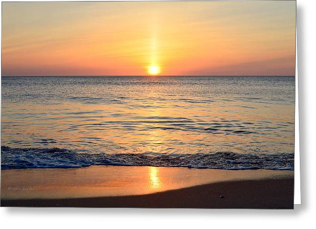 Greeting Card featuring the photograph Golden Sunrise  by Barbara Ann Bell