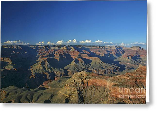 Grand Canyon At Sunset Greeting Card by Patricia Hofmeester