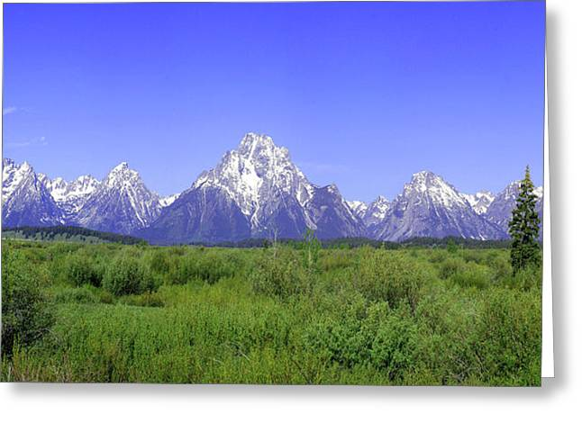 Grand Tetons Panorama Greeting Card by Mary Gaines