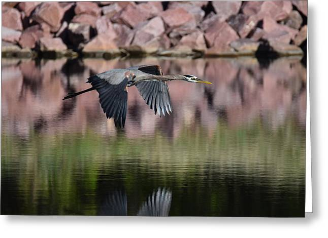 Greeting Card featuring the digital art Great Blue Heron by Margarethe Binkley