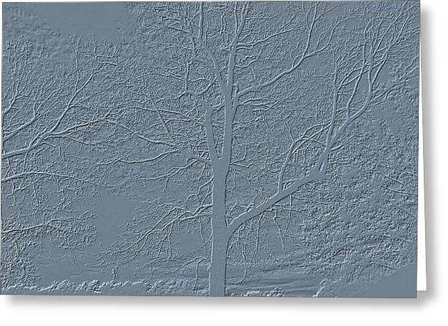 Grey Embossed Trees Greeting Card