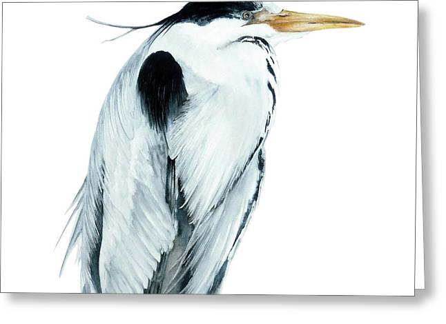 Grey Heron Greeting Card by Marie Burke