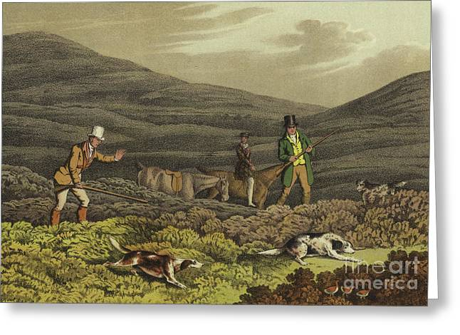Grouse Shooting Greeting Card by Henry Thomas Alken
