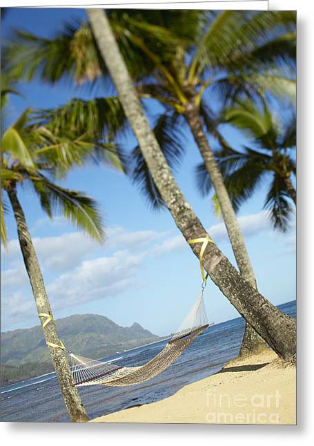 Hanalei Bay, Hammock Greeting Card by Kyle Rothenborg - Printscapes