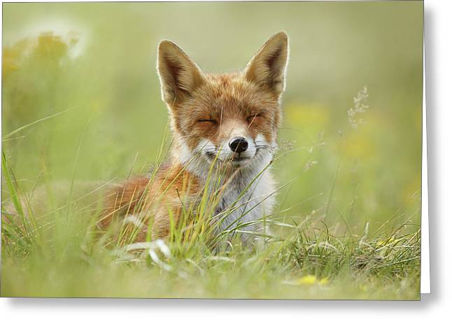 Happy Fox Is Happy Greeting Card by Roeselien Raimond