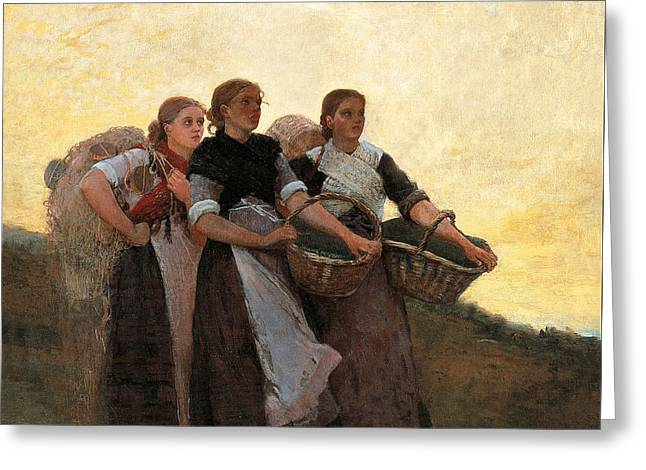 Hark  The Lark Greeting Card by Winslow Homer