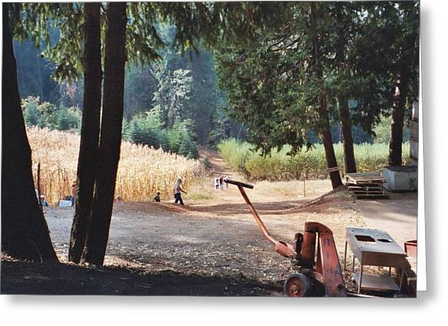Harvest Time At Apple Hill Greeting Card by Dawn Marie Black