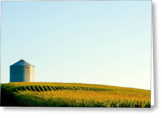 Harvest Time Greeting Card by Todd Klassy