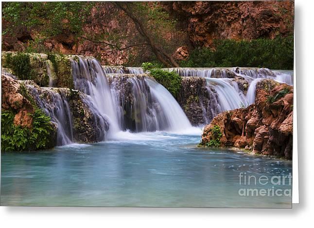 Havasu Creek Grand Canyon 2 Greeting Card by Bob Christopher