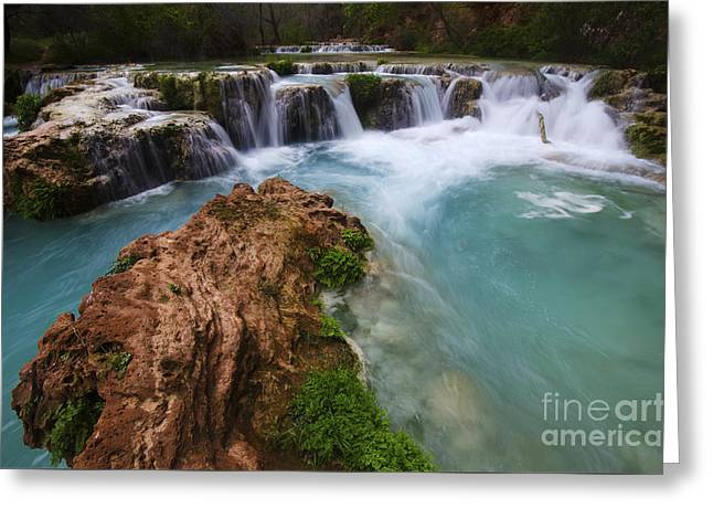 Havasu Creek Grand Canyon 10 Greeting Card