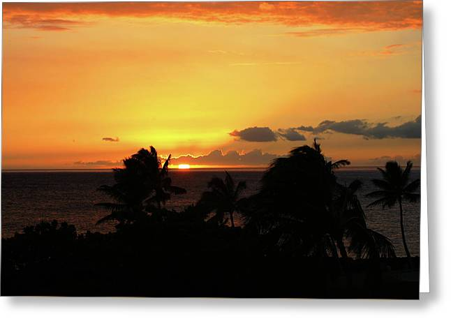 Greeting Card featuring the photograph Hawaiian Sunset by Anthony Jones