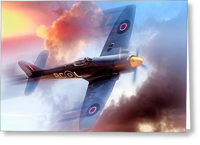 Greeting Card featuring the photograph Hawker Sea Fury by Steve Benefiel