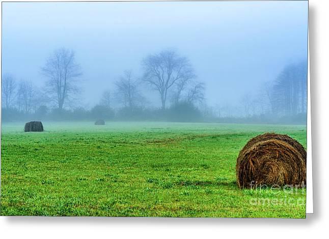 Hay Bales In Fog Greeting Card by Thomas R Fletcher