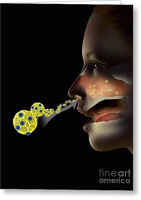 Hay Fever, Artwork Greeting Card by Claus Lunau