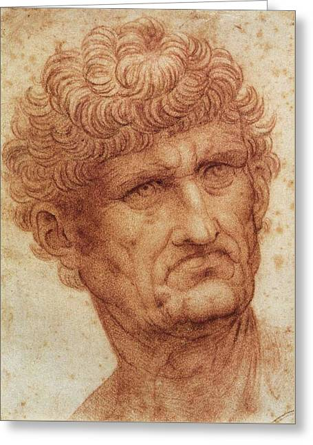 Head Of A Man Greeting Card by Leonardo da Vinci