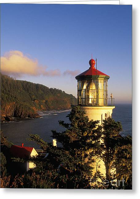Heceta Head Lighthouse Greeting Card by Greg Vaughn - Printscapes