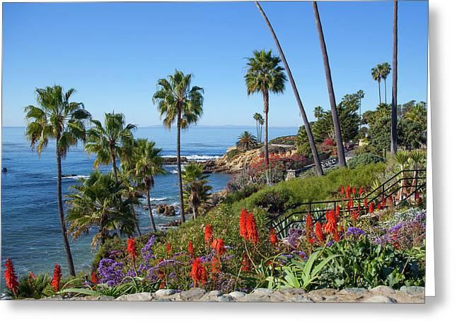 Heisler Park, Laguna Beach Greeting Card