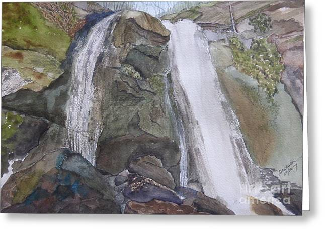 Greeting Card featuring the painting High Shoals Falls by Joel Deutsch