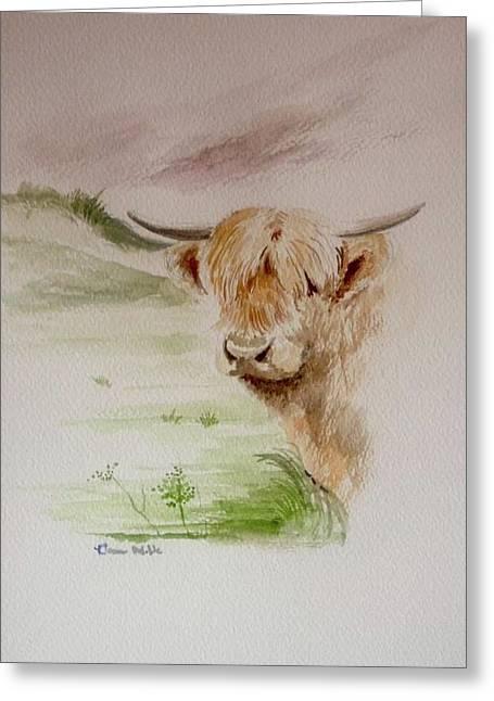 Highlander Greeting Card by Dawn Noble