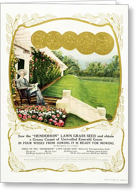 Historic Henderson Lawn Grass Seed Greeting Card